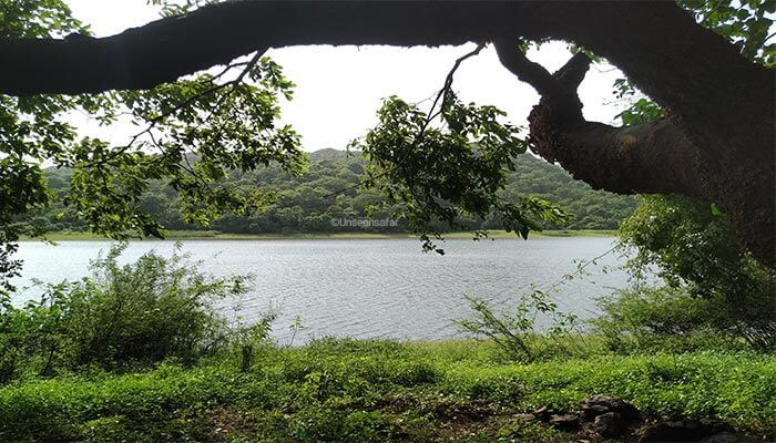 LAKE in mumbai vihar lake