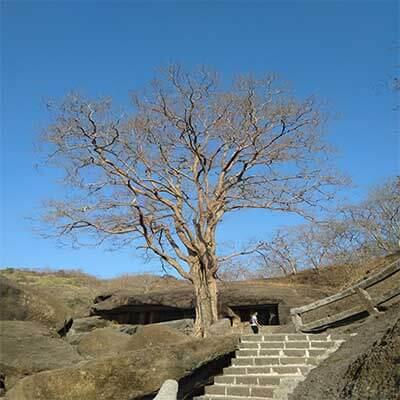 Kanheri caves stairs