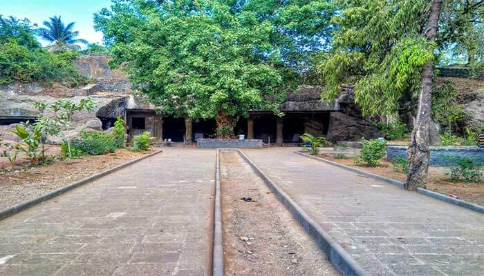 Mandapeshwar Caves trees picture