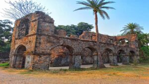 Nature Tales Of VASAI FORT: An Ideal Choice Worth?