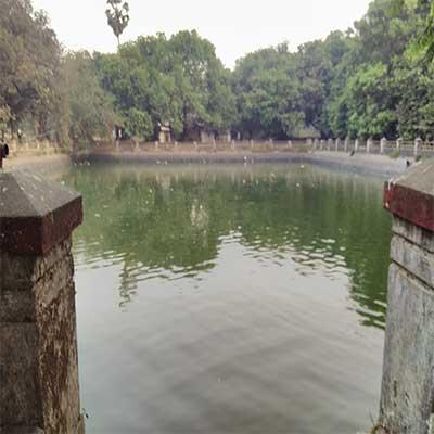 aarey garden lake